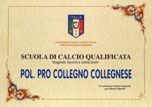 pergamena s.c. qualificata